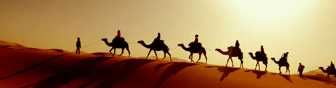 Jobs and Careers in the UAE - Dubai - Abu Dhabi (United Arab Emirates)